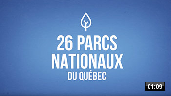 Min-video-pq-motion.jpg