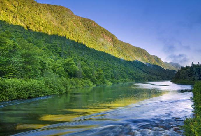 Excellente année en 2011 pour le saumon atlantique de la rivière