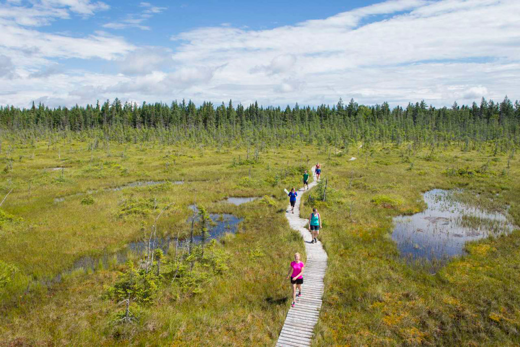 Parc National De Frontenac National Parks S 233 Paq