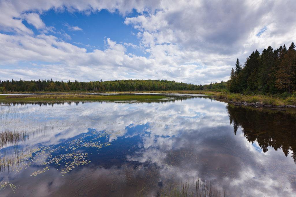 Parc national du lac t miscouata parcs nationaux s paq for Parc a visiter
